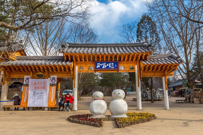 Khám Phá Hành Trình Seoul – Nami – Everland – N Tower