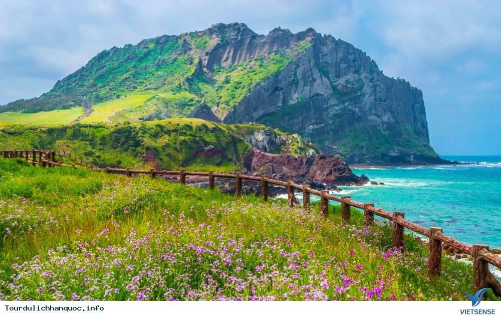 Tour du lịch Hàn Quốc 6 Ngày