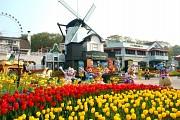 Công viên Everland – Hàn Quốc cho bạn trải nghiệm vòng quanh thế giới