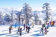 Trải Nghiệm Mùa Đông Tuyết Trắng Khi Tới Hàn Quốc Tháng 11