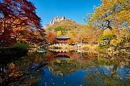 Những ngọn núi nổi tiếng ngắm lá đỏ mùa thu của Hàn Quốc