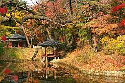 Cung điện Changdeokgung - Di sản văn hóa của du lịch Hàn Quốc