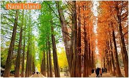 Tour du lịch Hà Nội - Hàn Quốc 5 Ngày