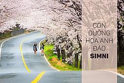 Tour Du Lich Hàn Quốc - Mùa Hoa Anh Đào KH Tháng 05 Từ TP. HCM
