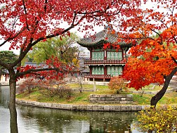 Tour Seoul - Nami - Everland - N Tower 5 Ngày