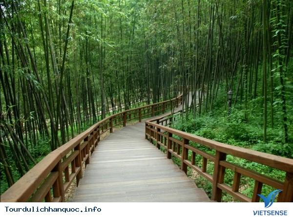 Trải nghiệm địa điểm thú vị tại Hàn Quốc - Ảnh 2