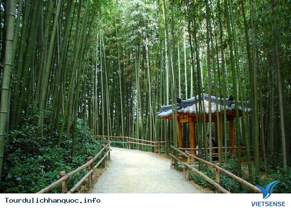 Trải nghiệm địa điểm thú vị tại Hàn Quốc - Ảnh 4