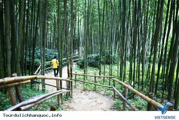 Trải nghiệm địa điểm thú vị tại Hàn Quốc - Ảnh 3