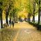 7 địa điểm đẹp nhất vào mùa thu ở Hàn Quốc