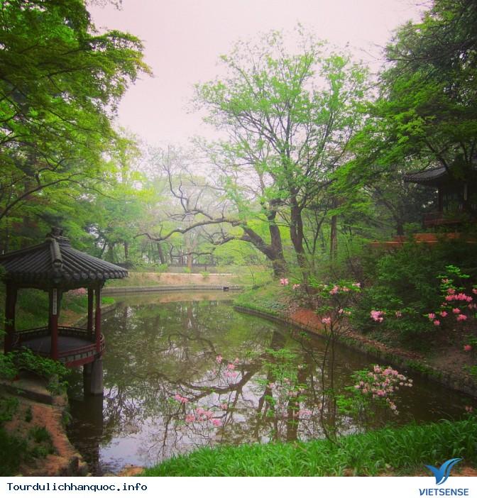 20 Những điều Bạn Phải làm ngay khi đến Seoul Hàn Quốc - Ảnh 6