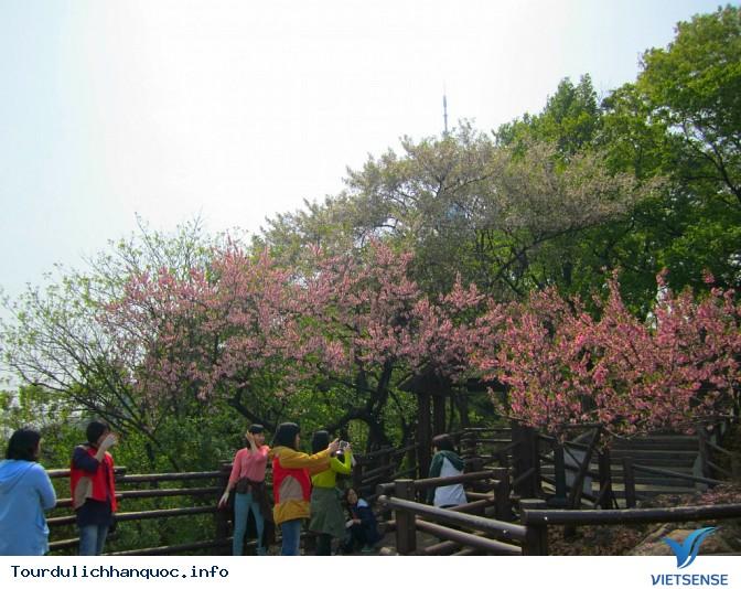 20 Những điều Bạn Phải làm ngay khi đến Seoul Hàn Quốc - Ảnh 8