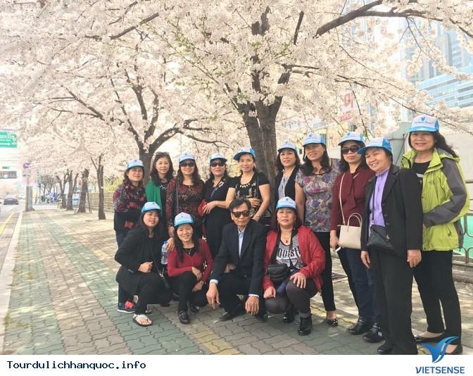 Đoàn khách đi tour du lịch Hàn Quốc: SEOUL - NAMI - EVERLAND 05/04-09/04/2016 - Ảnh 18