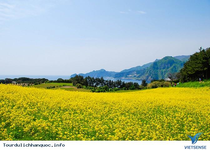 Du lịch Hàn Quốc để đến với các đảo Dokdo & Ulleung-do, đảo cực đông của Hàn Quốc - Ảnh 1