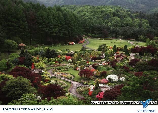 Những cảnh đẹp không thể không đến khi đi du lịch Hàn Quốc - Ảnh 4