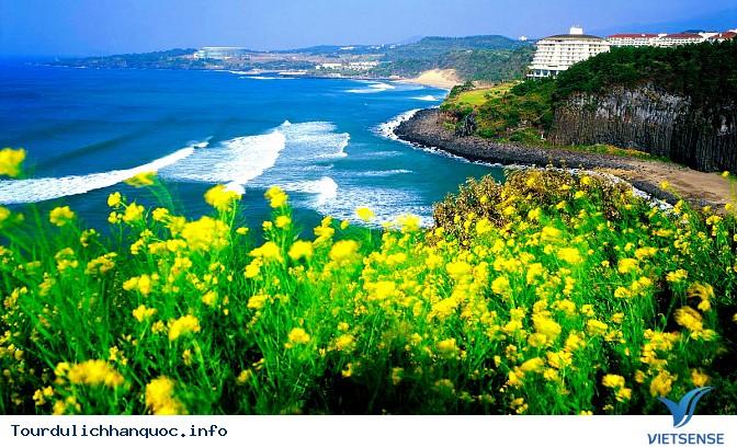Những cảnh đẹp không thể không đến khi đi du lịch Hàn Quốc - Ảnh 2