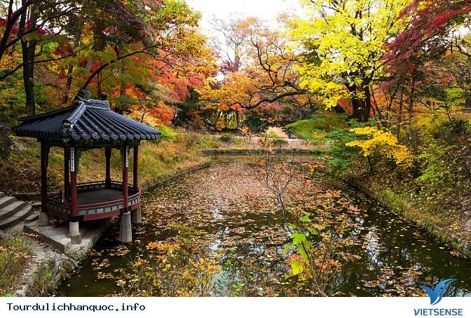 Vườn Yên Tĩnh - Ảnh 1