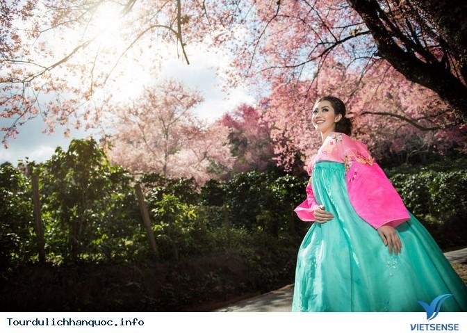 Tìm hiểu về hanbok  - trang phục truyền thống của Hàn Quốc - Ảnh 3