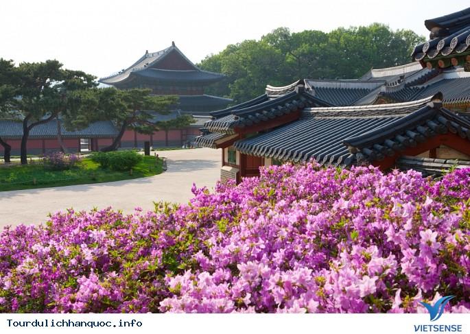 Du lịch Việt Nam - Hàn Quốc phát triển lớn mạnh - Ảnh 5