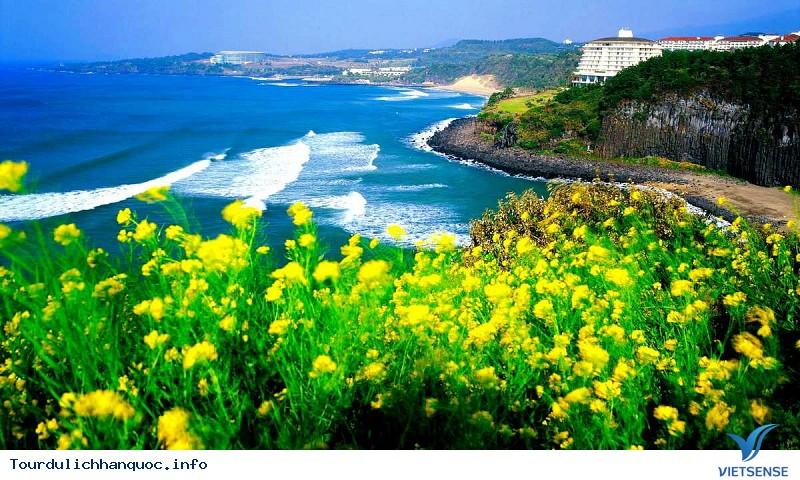 Chia sẻ kinh nghiệm và cẩm nang du lịch Hàn Quốc - Ảnh 2