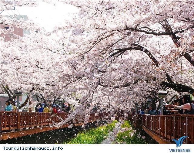 Khám Phá Những Lý Do Khiến Bạn Nhất Định Phải Tới Seoul Dù Chỉ Một Lần - Ảnh 3