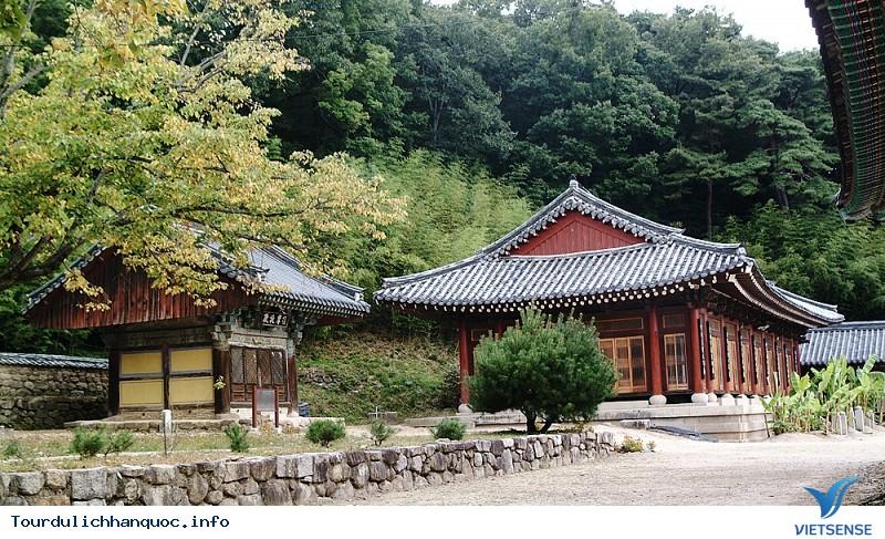 Khám Phá Thiên Đường Du Lịch Daegu Xứ Kim Chi - Ảnh 6