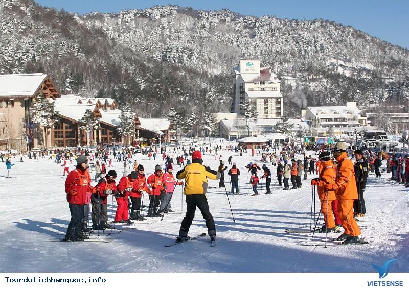 Khám Phá Trải Nghiệm Trượt Tuyết Mùa Đông Nơi Xứ Hàn - Ảnh 1