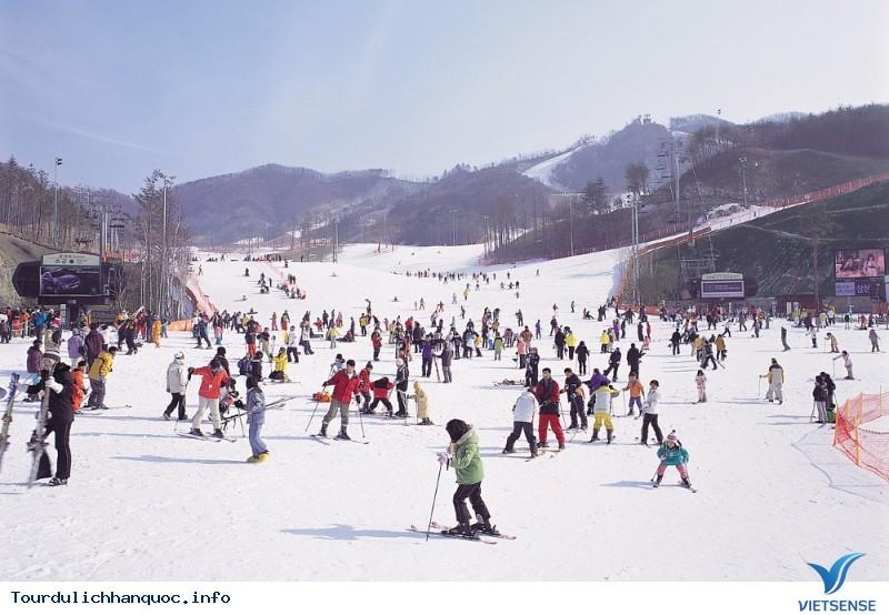 Trượt tuyết được xem là môn thể thao quốc dân của xứ Hàn - Ảnh 1