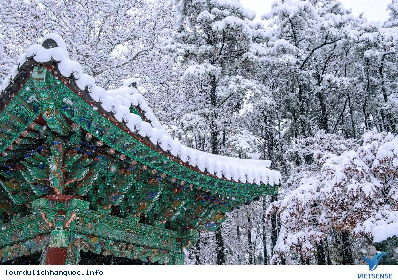 Khí Hậu Hàn Quốc - Ảnh 4