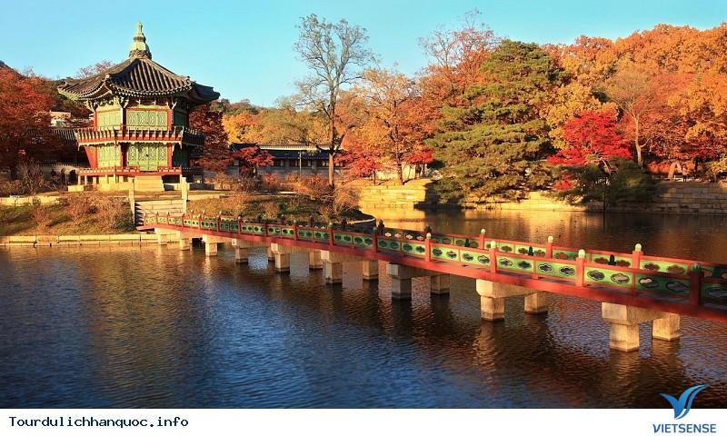 Phong cảnh Hàn Quốc tháng 11