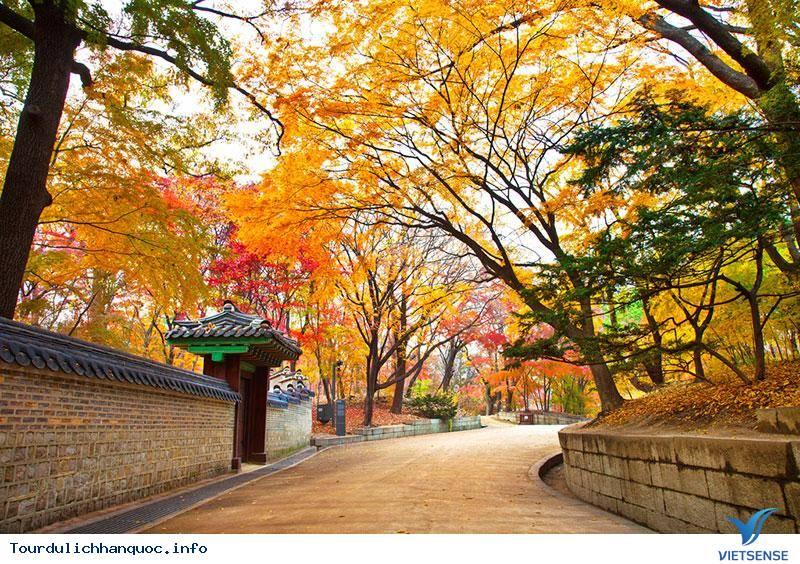 Nhiệt Độ Tại Hàn Quốc - Ảnh 2