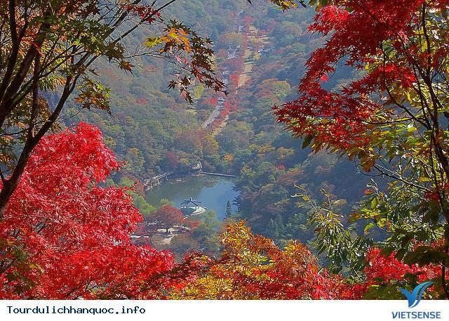 Những Địa Điểm Du Lịch Nổi Tiếng Tại Hàn Quốc - Ảnh 4