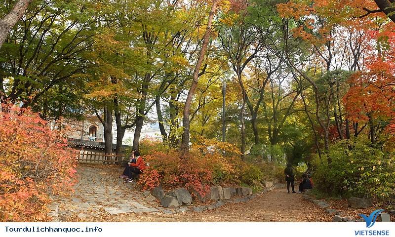 Thời Tiết Hàn Quốc Tháng 11 - Ảnh 2