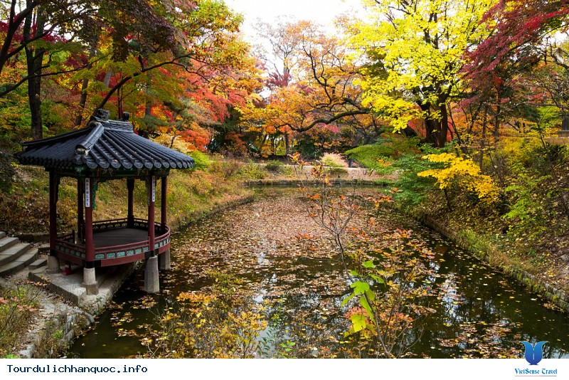 Thời Tiết Hàn Quốc Tháng 9 Có Gì Đặc Biệt - Ảnh 2
