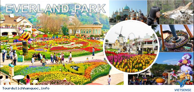 Công viên Everland - Hàn Quốc cho bạn trải nghiệm vòng quanh thế giới - Ảnh 1