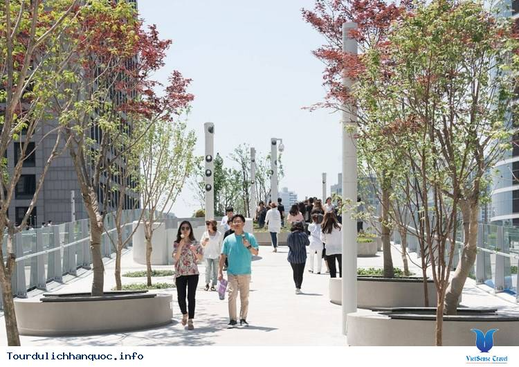 Chiêm ngưỡng khu vườn tuyệt đẹp trên cầu vượt Seoul ở Hàn Quốc - Ảnh 5