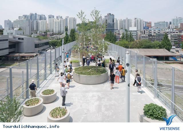 Chiêm ngưỡng khu vườn tuyệt đẹp trên cầu vượt Seoul ở Hàn Quốc - Ảnh 3