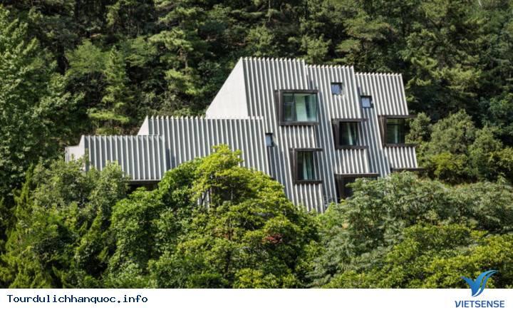 Chiêm ngường ngôi nhà độc đáo mọc giữa rừng Hàn Quốc. - Ảnh 1
