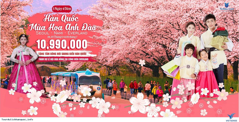 Đi du lịch Hàn Quốc 15 triệu đồng có đủ không? - Ảnh 1