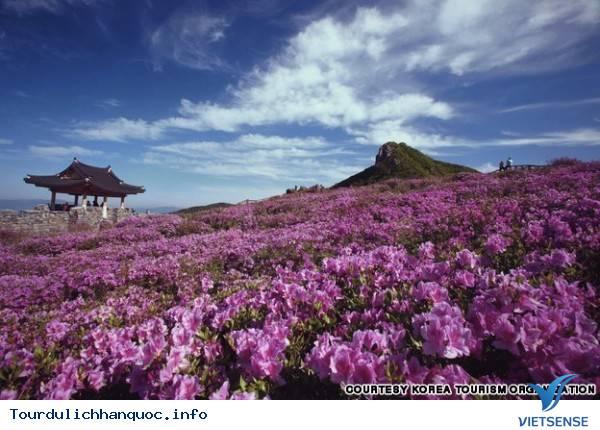 Địa điểm phải đến trong chuyến du lịch Hàn Quốc - Ảnh 34