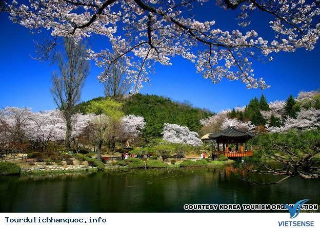 Địa điểm phải đến trong chuyến du lịch Hàn Quốc - Ảnh 11