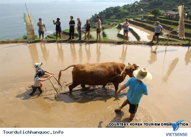 Địa điểm phải đến trong chuyến du lịch Hàn Quốc - Ảnh 3