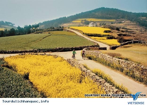 Địa điểm phải đến trong chuyến du lịch Hàn Quốc - Ảnh 27