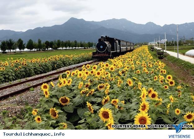 Địa điểm phải đến trong chuyến du lịch Hàn Quốc - Ảnh 26