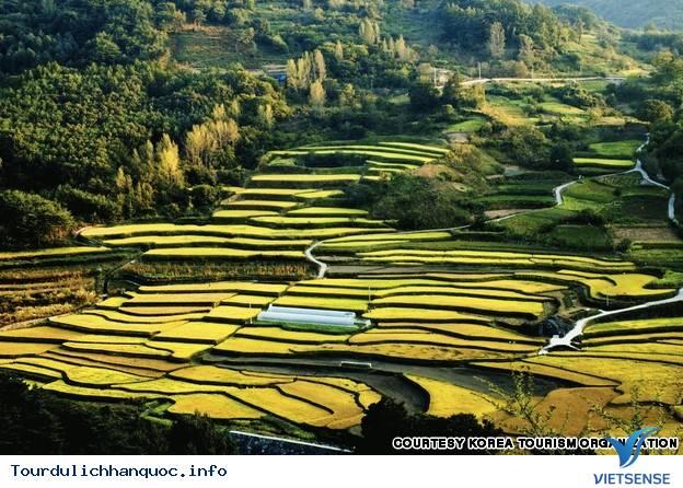 Địa điểm phải đến trong chuyến du lịch Hàn Quốc - Ảnh 29
