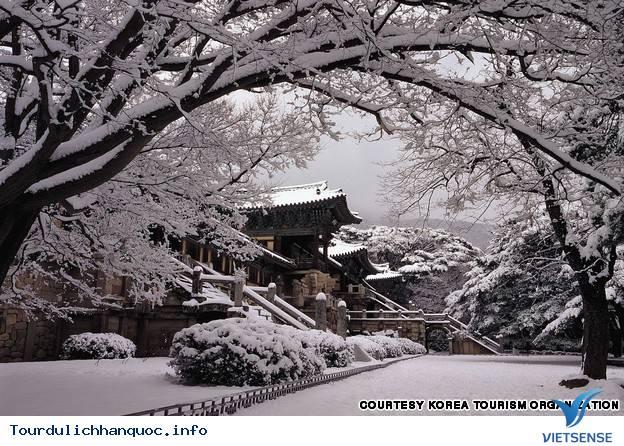 Địa điểm phải đến trong chuyến du lịch Hàn Quốc - Ảnh 19