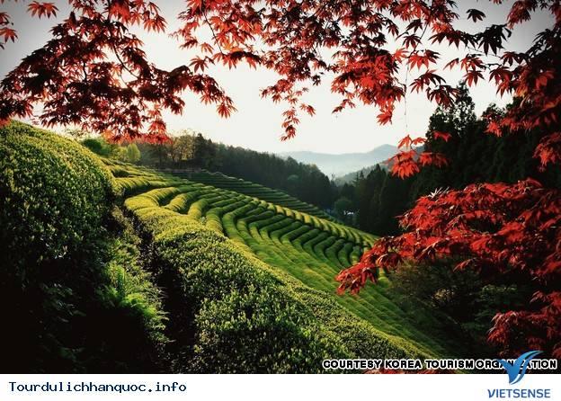 Địa điểm phải đến trong chuyến du lịch Hàn Quốc - Ảnh 18