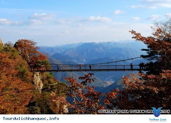 Địa điểm phải đến trong chuyến du lịch Hàn Quốc - Ảnh 36