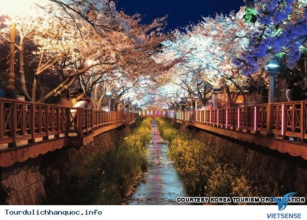 Địa điểm phải đến trong chuyến du lịch Hàn Quốc - Ảnh 17