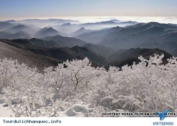 Địa điểm phải đến trong chuyến du lịch Hàn Quốc - Ảnh 39