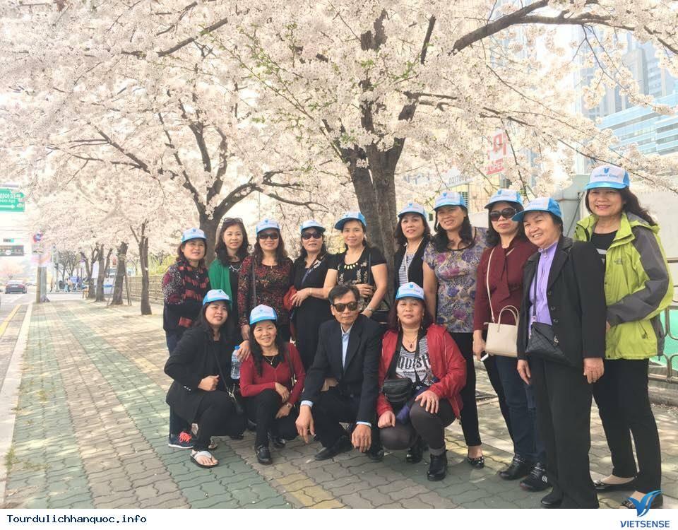 Đồng hành cùng Vietsense Hàn Quốc 5/4-10/4/2016 - Ảnh 8